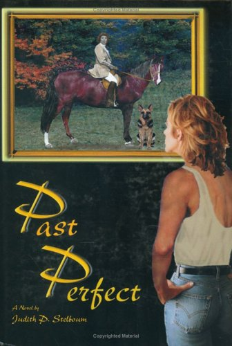 Past Perfect by Judith Stelboum